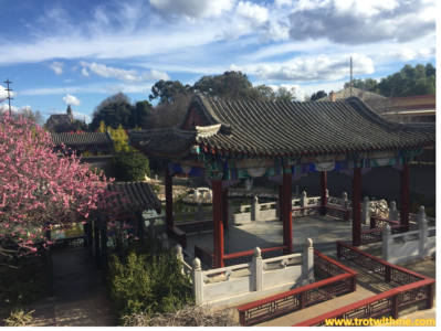 Chinese Temple & Garden